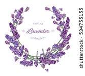 vector lavender flower round ... | Shutterstock .eps vector #534755155