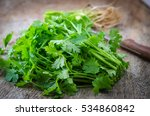 fresh parsley on wood background | Shutterstock . vector #534860842