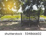 Wood Bench Under Tree Beside...