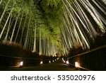 Path Of Lanterns In A Bamboo...