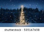 Illuminated Christmas Tree At...