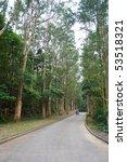 green tree road | Shutterstock . vector #53518321