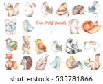 collection  set of watercolor... | Shutterstock . vector #535781866