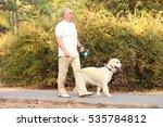 Stock photo senior man and big dog walking in park 535784812