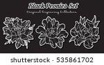 vector black peonies set... | Shutterstock .eps vector #535861702