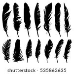 feathers of birds.  | Shutterstock .eps vector #535862635