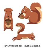 Cute Squirrel Cartoon Vector...