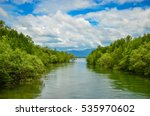 Mangroves Forest And The Canal...