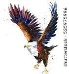 bald eagle watercolor... | Shutterstock . vector #535975996