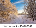 Winter Sunrise Landscape With...