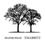 realistic trees silhouette ...   Shutterstock .eps vector #536188072