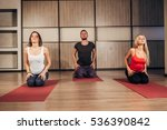 group of people making yoga...   Shutterstock . vector #536390842