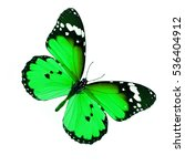Stock photo green butterfly with white spot on the wing on white background isolated 536404912
