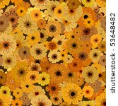 seamless pattern of yellow... | Shutterstock .eps vector #53648482
