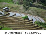 rice terraces in high mountain... | Shutterstock . vector #536529922