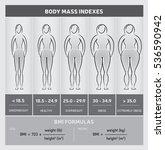 body mass index diagram ... | Shutterstock .eps vector #536590942