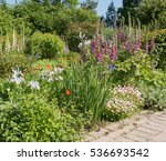 Colourful Flowerbed Of Common...