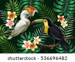 vector painting with tropical... | Shutterstock .eps vector #536696482