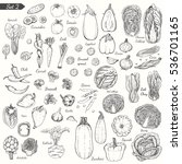 big set of vegetables in sketch ... | Shutterstock .eps vector #536701165