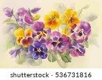 bouquet of violas watercolor | Shutterstock . vector #536731816