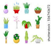 potted home plants set.... | Shutterstock .eps vector #536743672
