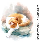 Stock photo watercolor cat sleeping on the pillow hand painted pet portrait animal illustration 536861875