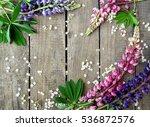 purple and pink lupines on dark ... | Shutterstock . vector #536872576