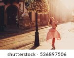 the beautiful girl with bouquet ... | Shutterstock . vector #536897506