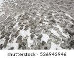 Multiple Human Footprints In...