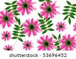 flower | Shutterstock .eps vector #53696452