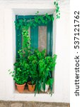 Small photo of Plants in pots in front of the door of a traditional greek house in the village Manolates on the aegean island Samos