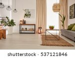 earth's tones home interior... | Shutterstock . vector #537121846