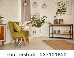 white home interior with green... | Shutterstock . vector #537121852