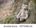 Teddy Bear Sits By The Tree