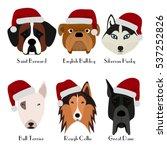 set of 6 dog's head. flat... | Shutterstock .eps vector #537252826