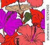 various hibiscus hawaiian... | Shutterstock .eps vector #537292432