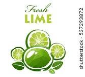 polygonal fresh lime slices... | Shutterstock . vector #537293872