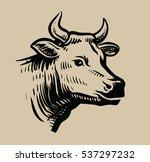 cow black head vector on white... | Shutterstock .eps vector #537297232