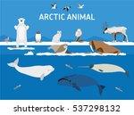 animals of the arctic. vector...   Shutterstock .eps vector #537298132