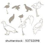 vector birds silhouettes | Shutterstock .eps vector #53732098