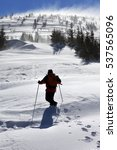 Hiker In Winter Mountains At...