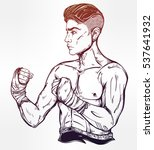 hand drawn boxer fighter ... | Shutterstock .eps vector #537641932