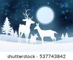 Christmas Winter Snow Scene...