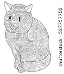 cat animal coloring book for... | Shutterstock . vector #537757702