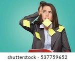 personal organizer. | Shutterstock . vector #537759652