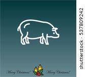 web line icon. pig  livestock | Shutterstock .eps vector #537809242