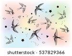 swallow in sky vector set | Shutterstock .eps vector #537829366
