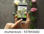 female hands taking photo of... | Shutterstock . vector #537843682