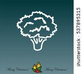 web line icon. broccoli   Shutterstock .eps vector #537895315