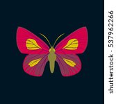 colorful icon of butterfly... | Shutterstock .eps vector #537962266